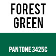forest_green_3425C_lanyard